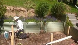 Making Veggie Garden - cropped