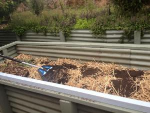 Veggie Garden Layers - Sunday Musings