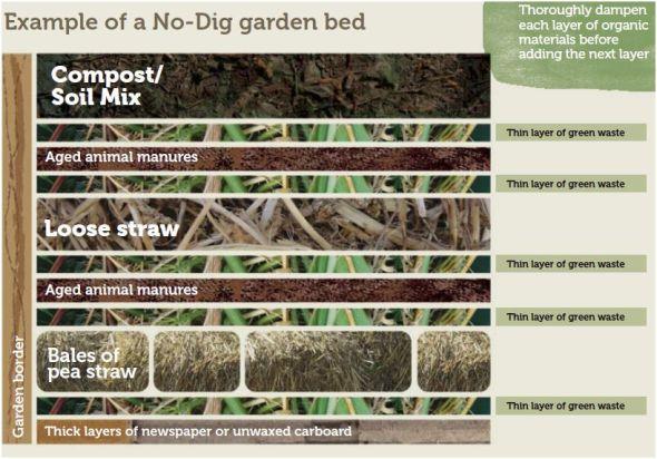 No Dig Garden courtesy sgaonline.org.au