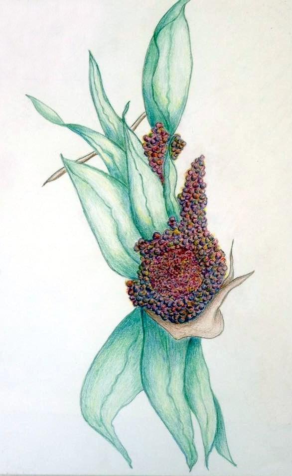 art-flower-1.jpg