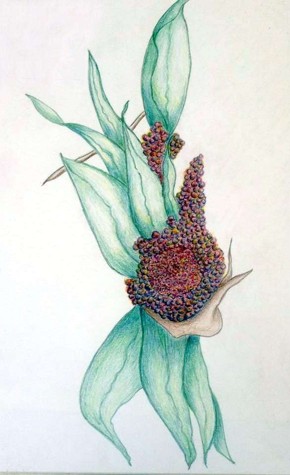Art-Flower-1