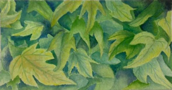 summer-ivy.jpg